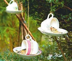 Teacup Bird Feeder for Seniors needing Home Care.